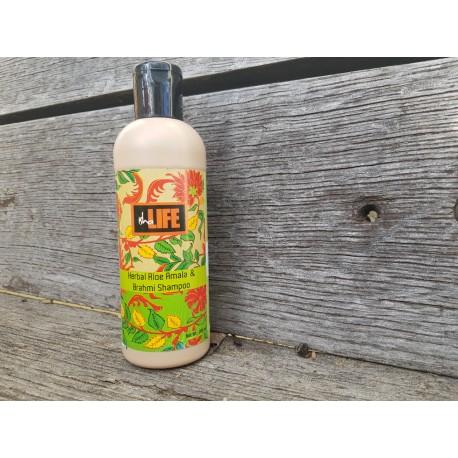 Zeliščni šampon  Aloe amala / brahmi šampon